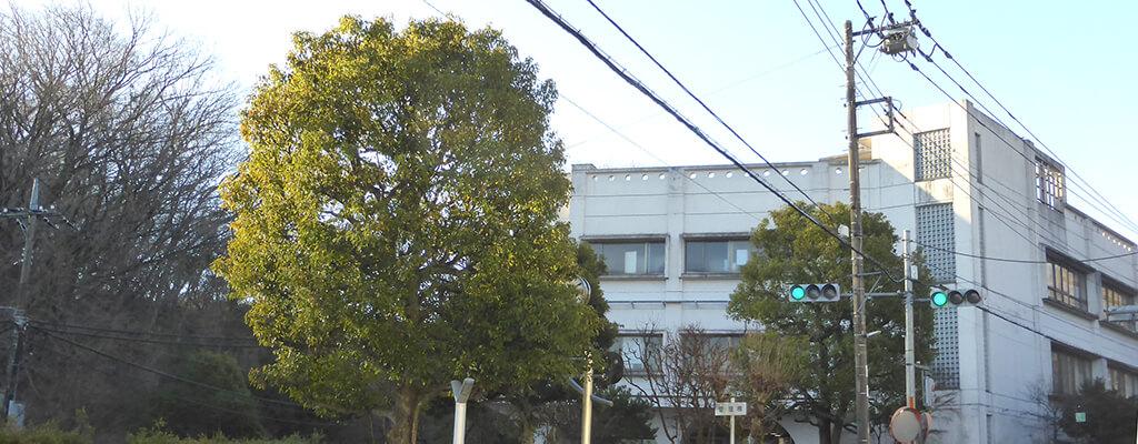 東京都七生福祉園のイメージスライド1