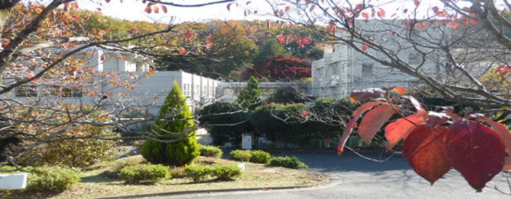 東京都七生福祉園のイメージスライド2