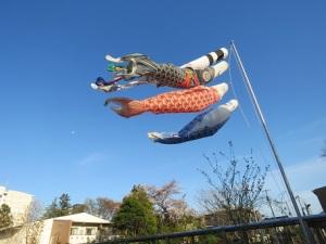 子ども達の夢をのせて – 東京都石神井学園