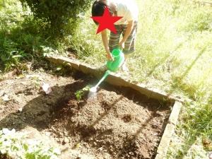畑作業をしている写真